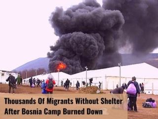 Thousands of migrants without shelter after Bosnia camp burned down