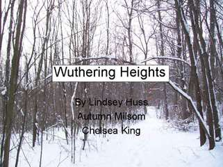 wuthering heights (2nd nine weeks)