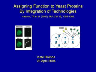 Assigning Function to Yeast Proteins By Integration of Technologies