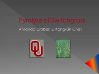 Pyrolysis of Switchgrass
