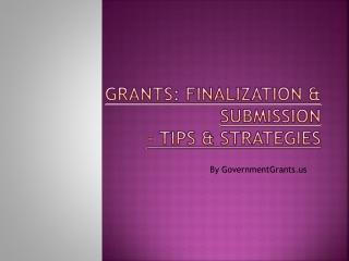 GovernmentGrants - Finalization and Submission procedure