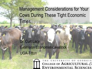 Management Considerations for Your Cows During These Tight Economic Times
