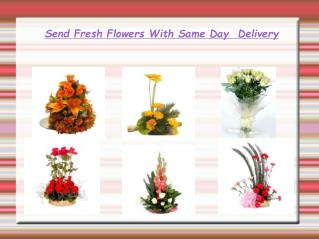 Send Fresh Flowers With Same Day  Delivery