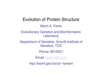 Evolution of Protein Structure Mario A. Fares Evolutionary Genetics and Bioinformatics Laboratory Department of Genetics