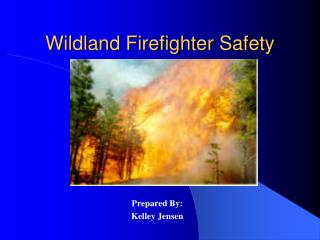 Wildland Firefighter Safety