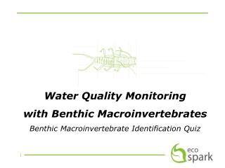 Water Quality Monitoring  with Benthic Macroinvertebrates Benthic Macroinvertebrate Identification Quiz