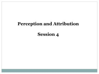 Perception and Attribution  Session 4