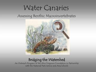 Bridging the Watershed An Outreach Program of the Alice Ferguson Foundation in Partnership  with the National Park Servi