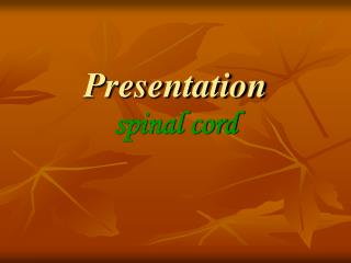 Presentation spinal cord