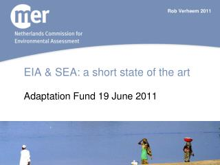 EIA  SEA: a short state of the art