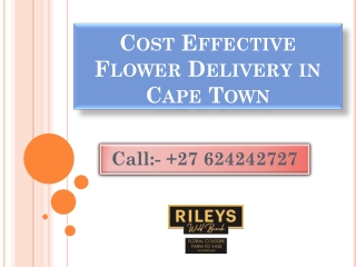 Cost Effective Flower Delivery in Cape Town