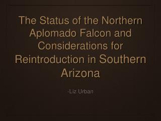 The Status of the Northern Aplomado Falcon and Considerations for  Reintroduction in  Southern Arizona