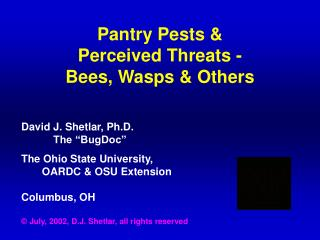 Pantry Pests & Perceived Threats - Bees, Wasps & Others