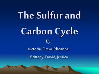 The Sulfur and Carbon Cycle