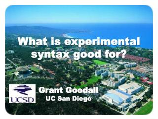 What is experimental syntax good for?