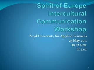 Spirit of Europe Intercultural Communication Workshop