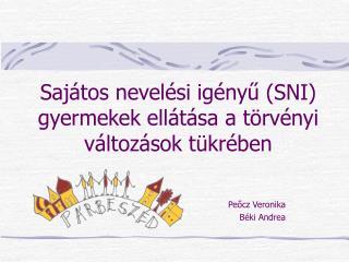 Sajátos nevelési igényű (SNI) gyermekek ellátása a törvényi változások tükrében