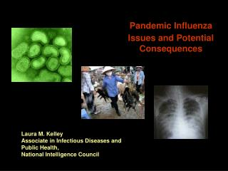 Pandemic Influenza Issues and Potential Consequences