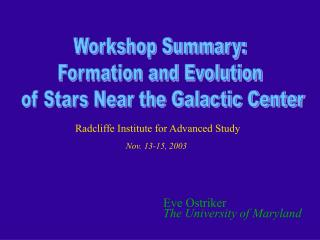 Workshop Summary: Formation and Evolution  of Stars Near the Galactic Center