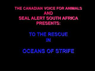 THE CANADIAN VOICE FOR ANIMALS AND SEAL ALERT SOUTH AFRICA PRESENTS: TO THE RESCUE IN OCEANS OF STRIFE
