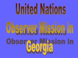 United Nations  Observer Mission in  Georgia
