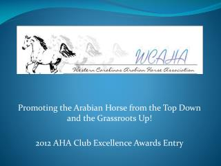 Promoting the Arabian Horse from the Top Down and the Grassroots Up! 2012 AHA Club Excellence Awards Entry