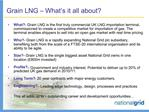 Grain LNG   What s it all about