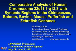 Comparative Analysis of Human Chromosome 22q11.1-q12.3 with Syntenic Regions in the Chimpanzee, Baboon, Bovine, Mouse, P