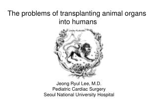 The problems of transplanting animal organs  into humans
