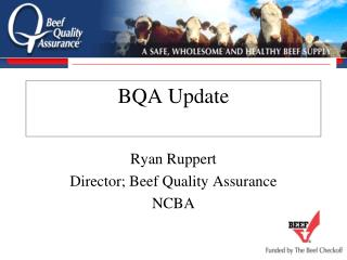 BQA Update