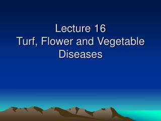 Lecture 16 Turf, Flower and Vegetable Diseases