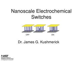 Nanoscale Electrochemical Switches