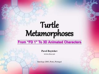 Turtle Metamorphoses