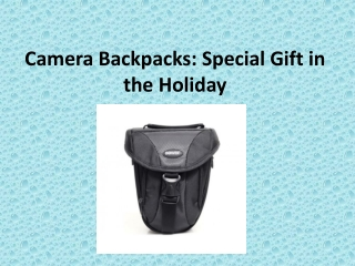 Camera Backpacks: Special Gift in the Holiday