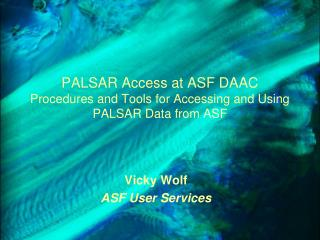 PALSAR Access at ASF DAAC Procedures and Tools for Accessing and Using PALSAR Data from ASF