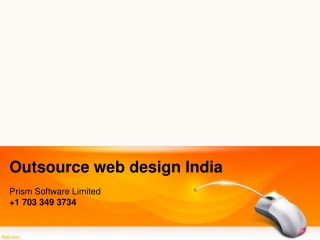 custom web programming india