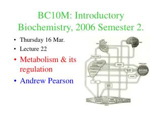 BC10M: Introductory  Biochemistry, 2006 Semester 2.