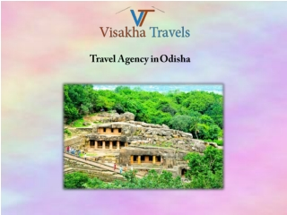 Trusted Travel Agency in Odisha Offering Exciting Tours Packages