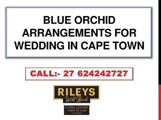 Blue Orchid Arrangements for wedding in Cape Town