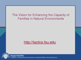 The Vision for Enhancing the Capacity of  Families in Natural Environments