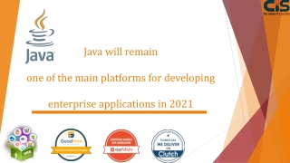 Java will remain one of the main platforms for developing enterprise applications in 2021