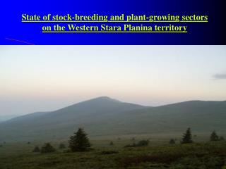 State of stock-breeding and plant-growing sectors on the Western Stara Planina territory