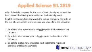 Applied Science SIL 2019