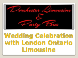 Wedding Celebration with London Ontario Limousine