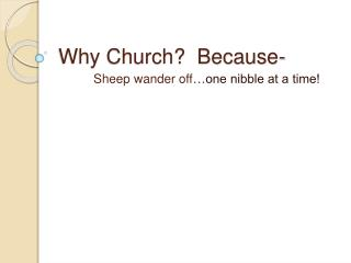 Why Church?  Because-