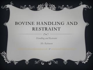 Bovine Handling and Restraint