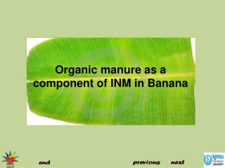 Organic manure as a component of INM in Banana