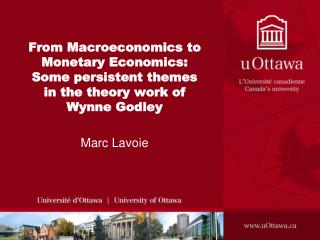 From Macroeconomics to Monetary Economics: Some persistent themes in the theory work of Wynne Godley