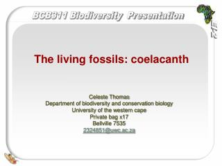 The living fossils: coelacanth
