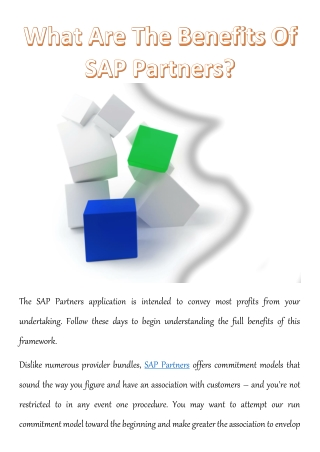 What Are The Benefits Of SAP Partners?